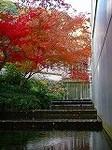 「大山崎山荘美術館」DSCN2603.jpg