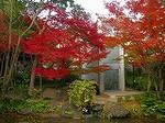 「大山崎山荘美術館」DSCN2609.jpg