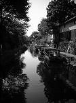 近江八幡DSCN1939.jpg